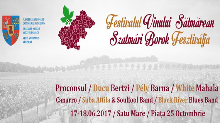 festivalulvinului